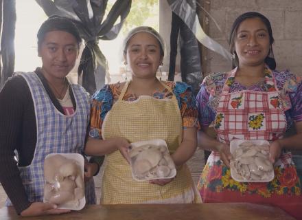 Tres mujeres jóvenes de ascendencia indígena muestran con orgullo su producción de hongos.